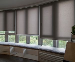 Gray Roller Blinds — Elegant Blinds Awnings in Taree, NSW